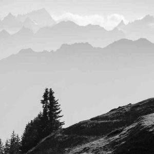 Pure MTB Ridefree Camp Mountain Biking Alps Switzerland